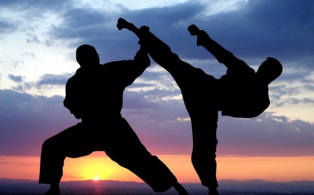 art martiaux