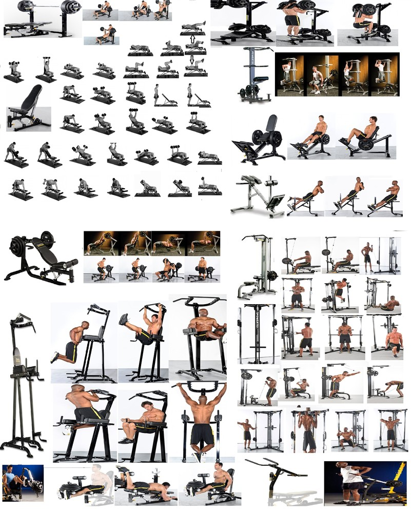 exercice musculation avec banc