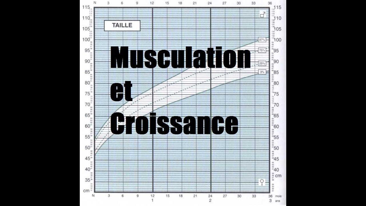 musculation croissance