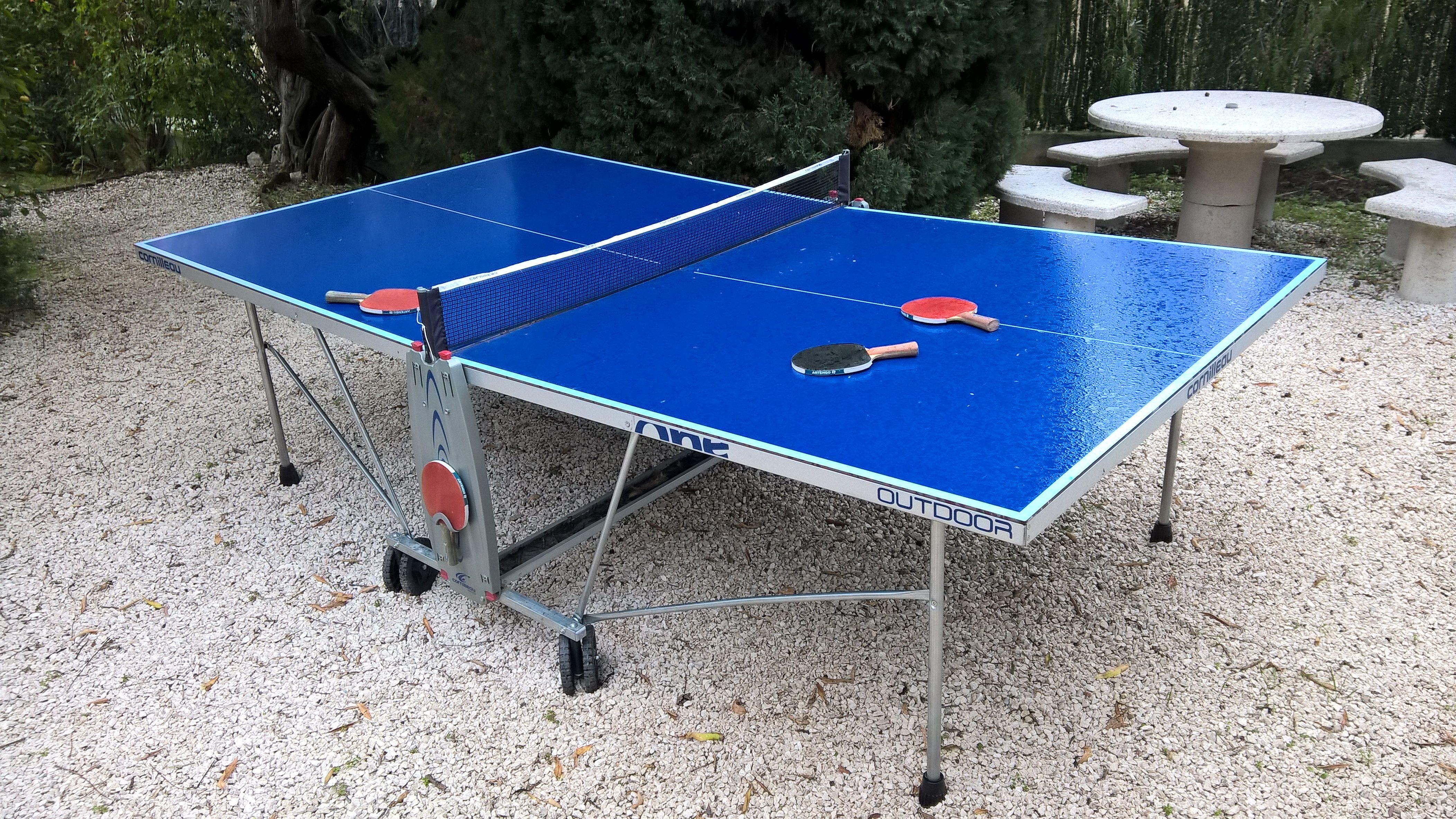 table de ping pong exterieur occasion