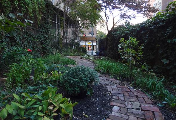 alices garden