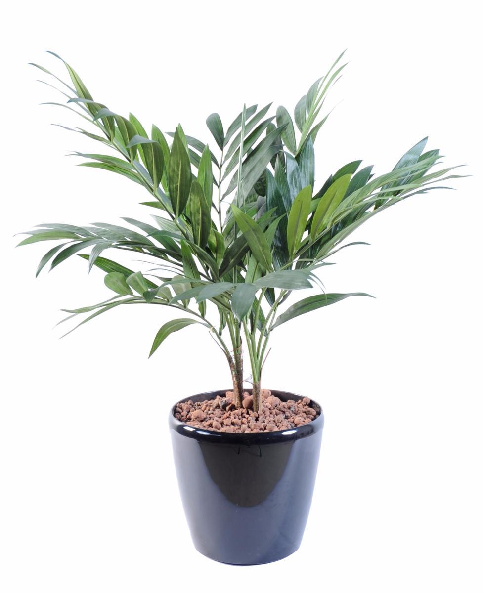 pot de plante