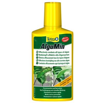 anti algue aquarium