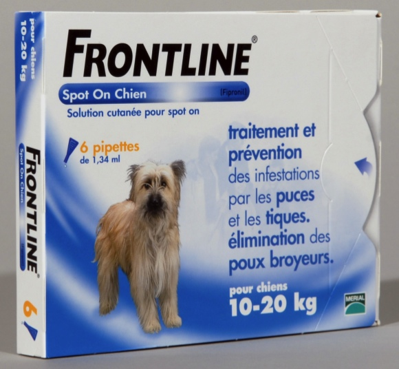 antiparasitaire chien