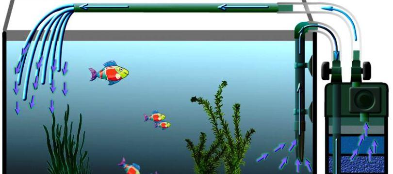 aquarium pompe