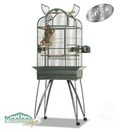 cage montana bresil