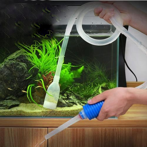 changement eau aquarium