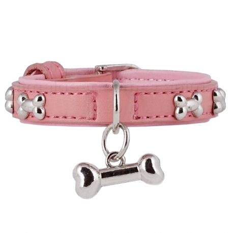 collier chiot
