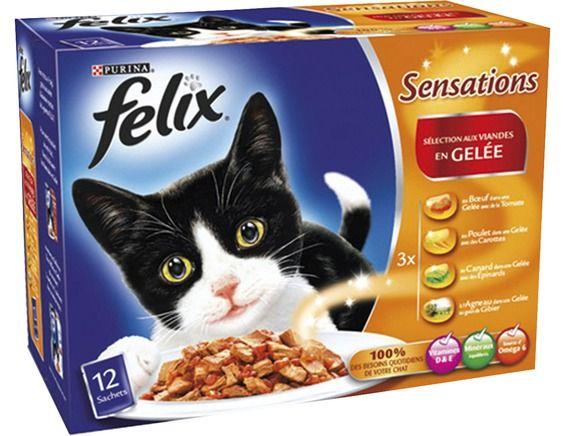 felix pour chat