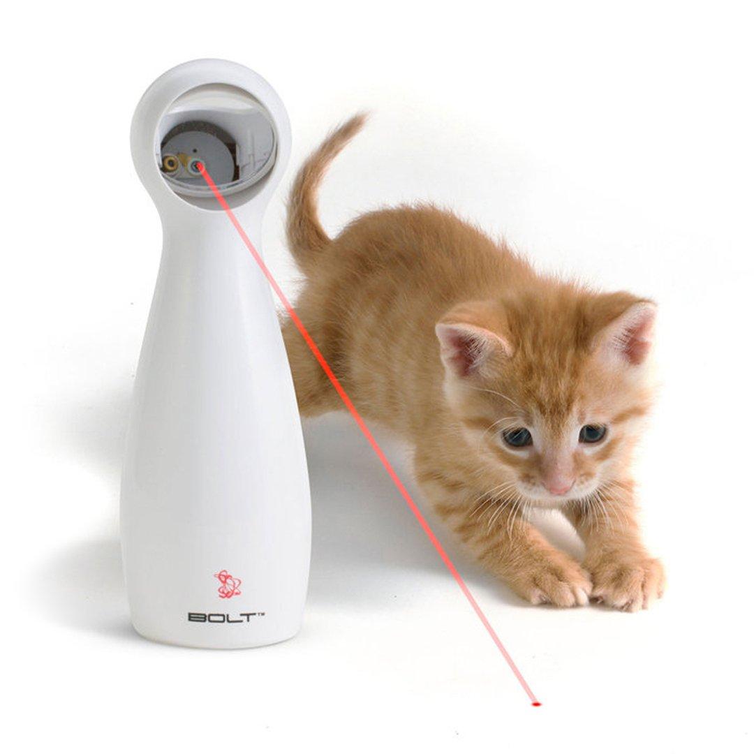 frolicat bolt laser