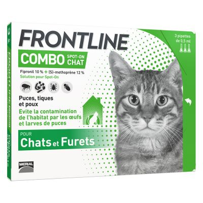 frontline pour chat