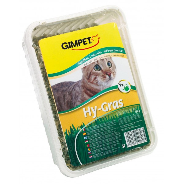 gimcat hydro gras