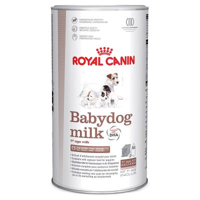 lait royal canin