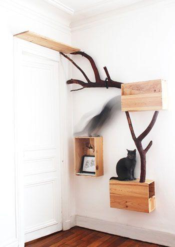 mobilier pour chat