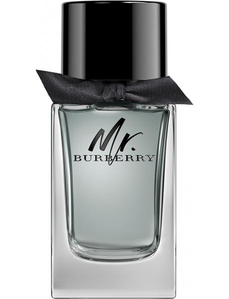 mr burberry eau de parfum