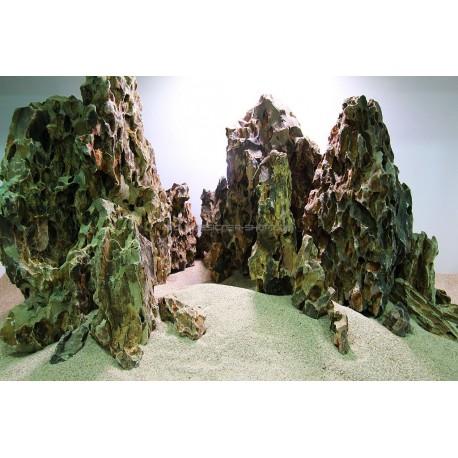roche aquarium