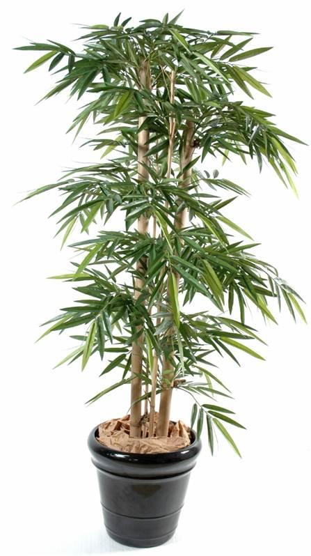 faux bambou