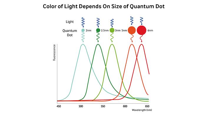 quantum dot